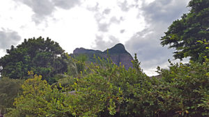 Pedra da Gavea from the bottom