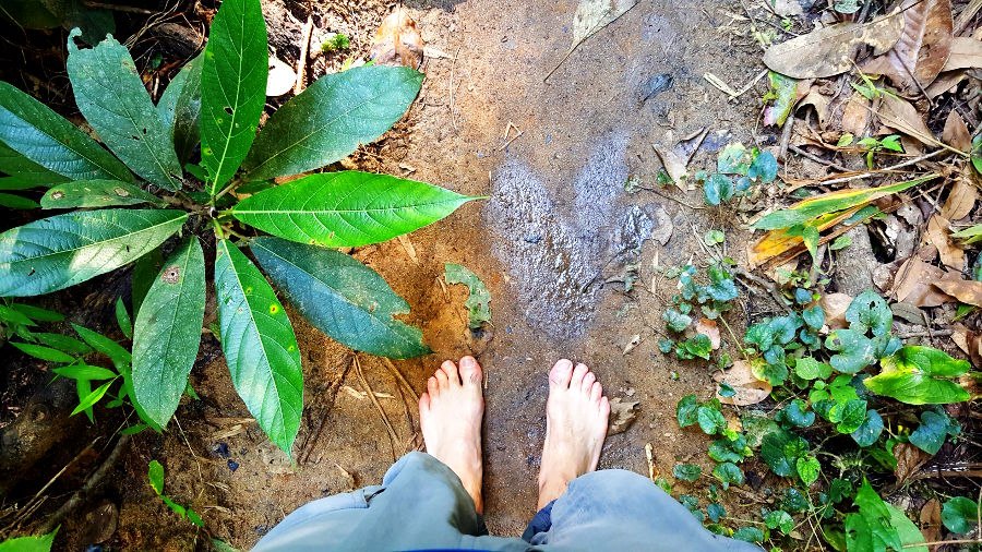 Walking Bare foot in the jungle