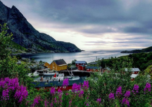 Country guide to Norway